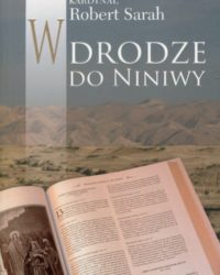 w-drodze-do-niniwy,big,732133